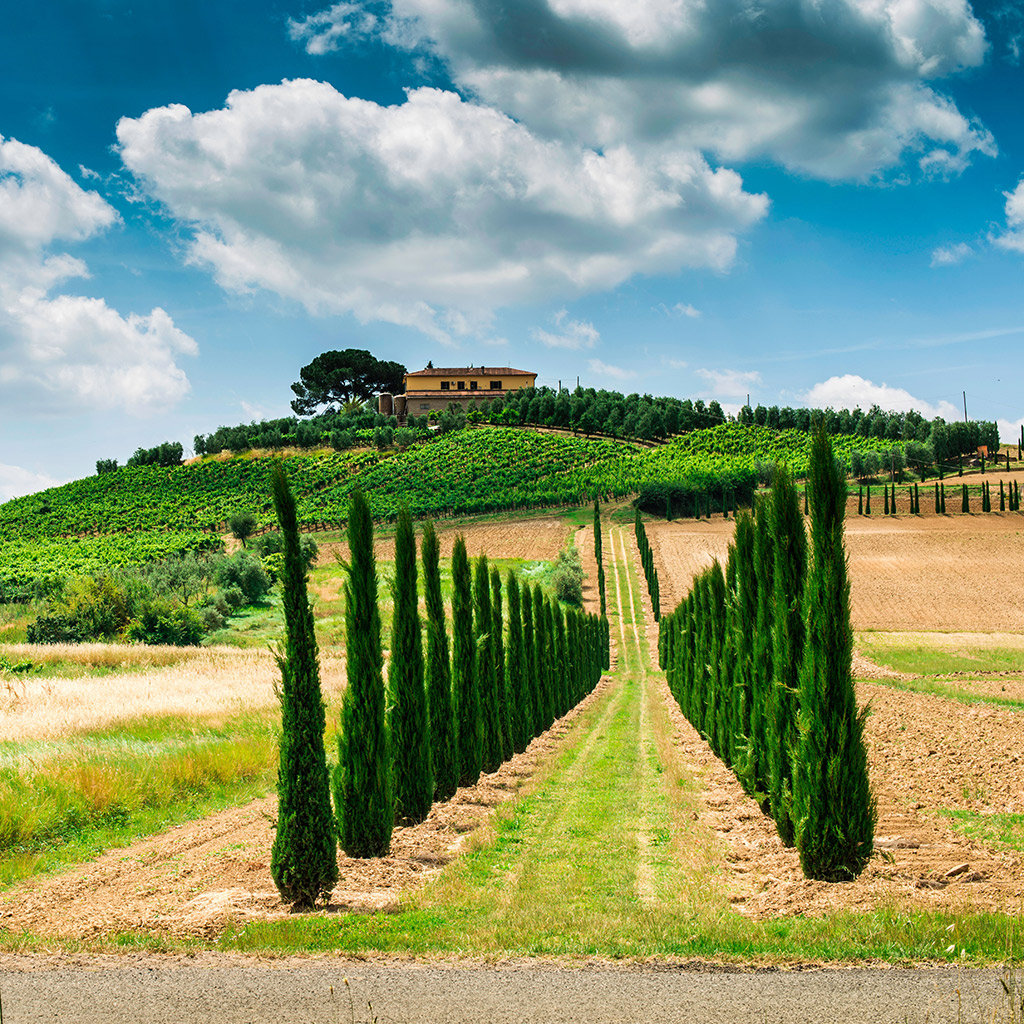 Weekend Tasting with Richard: Wines of Tuscany image