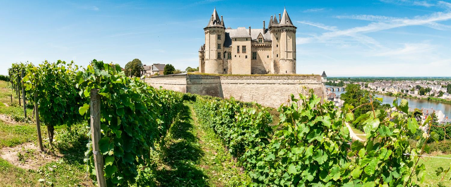 Loire Valley Wine Seminar with Charles Oliver image